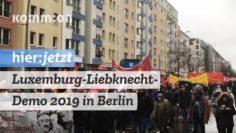 Luxemburg-Liebknecht-Demo 2019 in Berlin. Die Adler der Revolution zwischen Tradition und Nostalgie