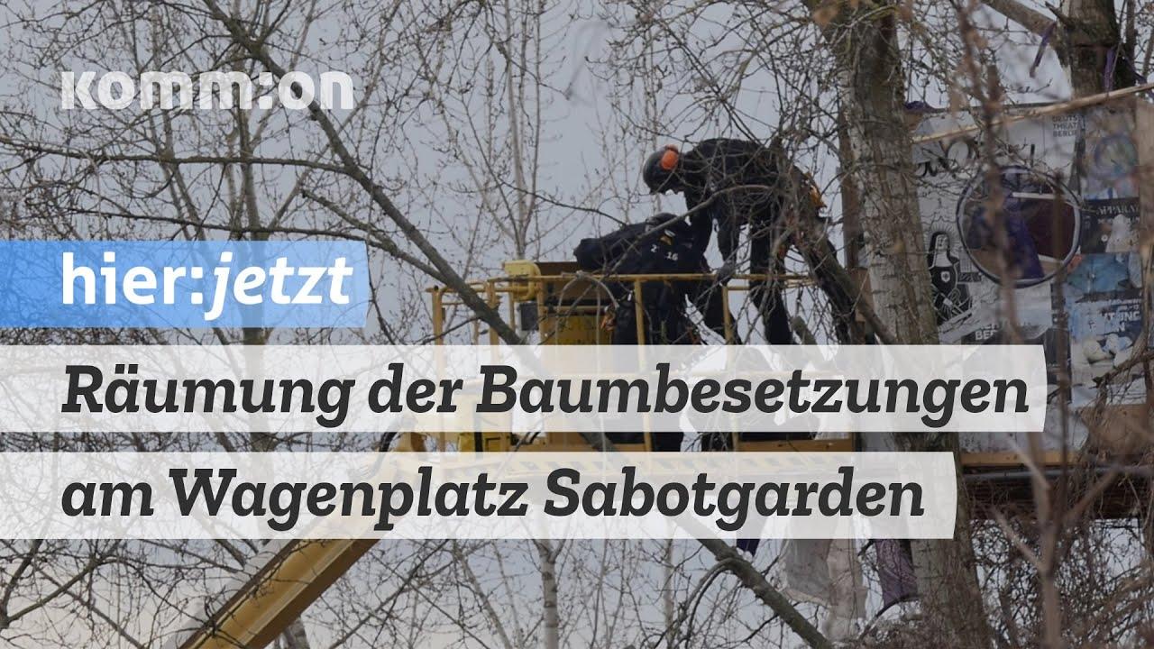 Räumung der Baumbesetzungen am Wagenplatz Sabotgarden
