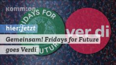 Gemeinsam! Fridays for Future goes Verdi!