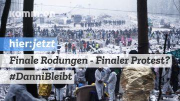Finale Rodungen – Finaler Protest? #DanniBleibt