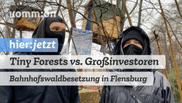 Tiny Forests vs. (Groß-)Investoren: Bahnhofswald-Besetzung in Flensburg