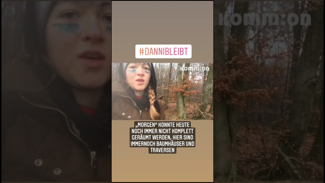Update aus dem Dannenröder Forst 28.11 #DanniBleibt